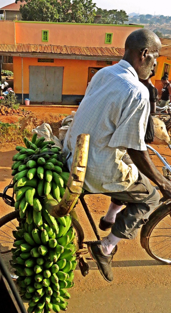 Man with bananas on bike